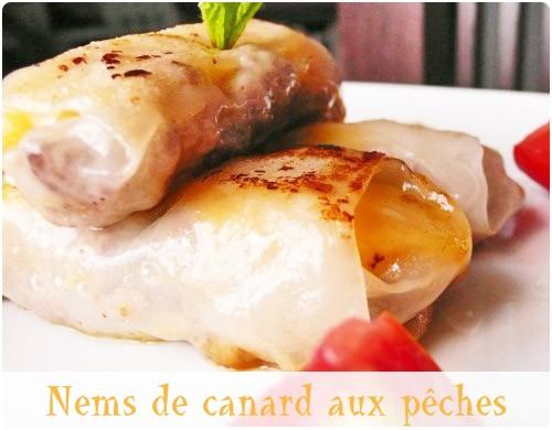 nem-canard-peche31