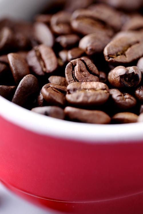 coffee-curd8
