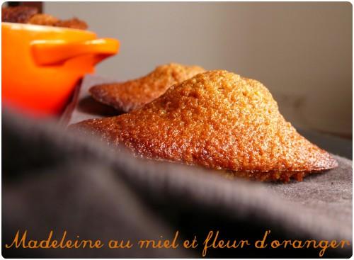 Madeleines A La Fleur D Oranger Et Miel Chefnini
