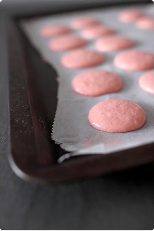 Macarons : Vidéo, FAQ, Méthode, Ustensiles pour les réussir.