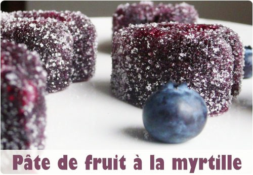 pate-fruit-myrtille