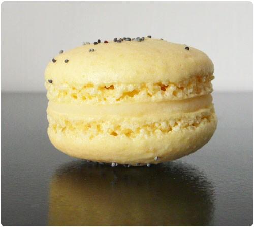 macaron-citron