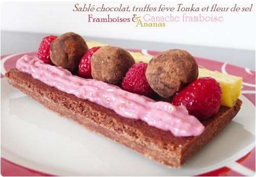 sable-chocolat-fruit-truffe2