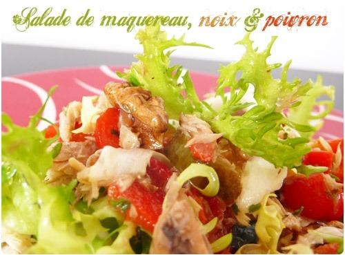 salade-maquereau-poivron-noix2