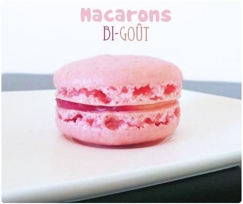 macaron-bigout