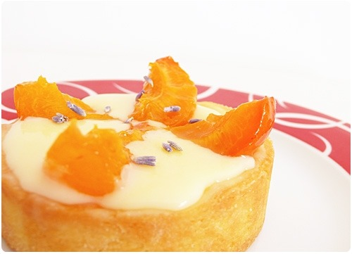 Tartelette aux abricots et crème chocolat blanc