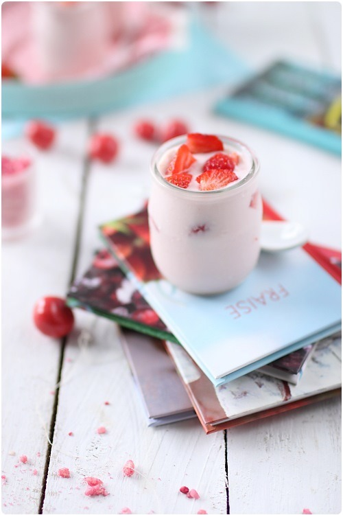 yaourt-pralines10