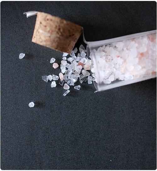 Risotto aux girolles et sel d 39 himalaya chefnini - Sel d himalaya ...
