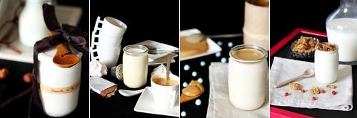 Tout sur les yaourts maison et le choix dune yaourtière