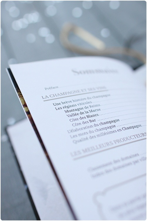 guide-larousse-champagne4