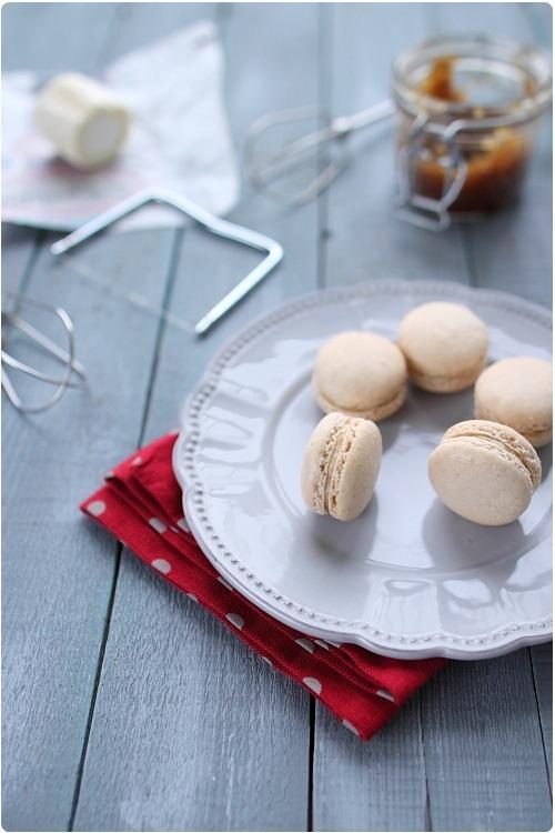 macarons-chevre-oignon3