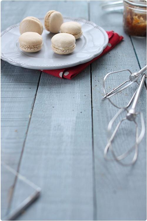 macarons-chevre-oignon4