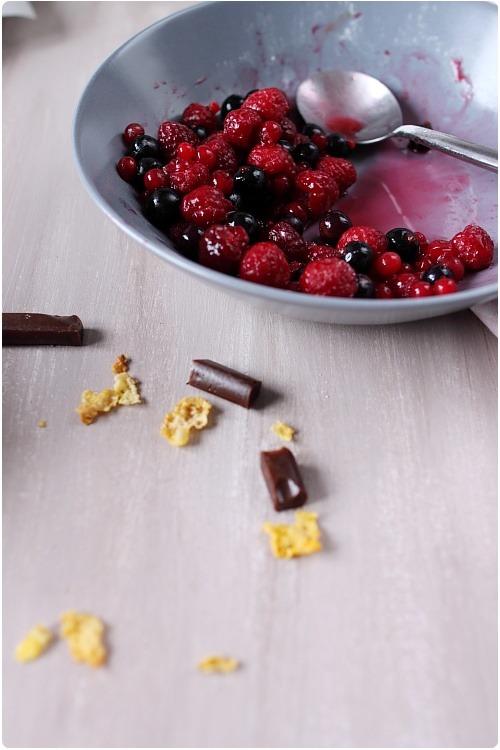 nid-chocolat-carambar-fruit-rouge5