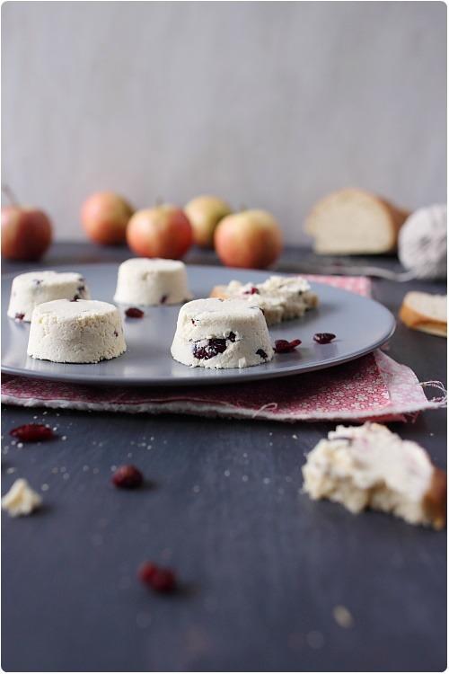 fromage-frais-cranberries6