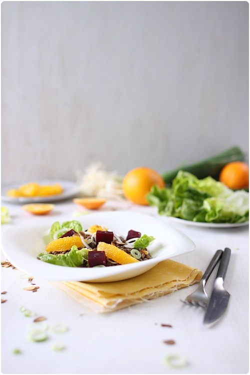 salade-lentilles-orange-betterave7