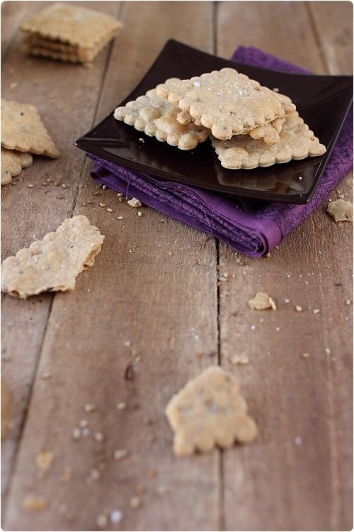 crackers-petit-epeautre3
