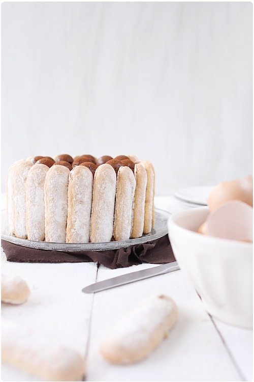 charlotte-chocolat-vanille13