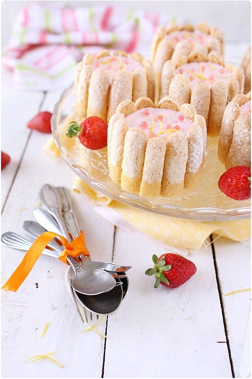 mini-charlotte-fraise-mangue10