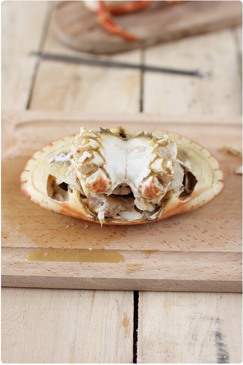 decortiquer-crabe11