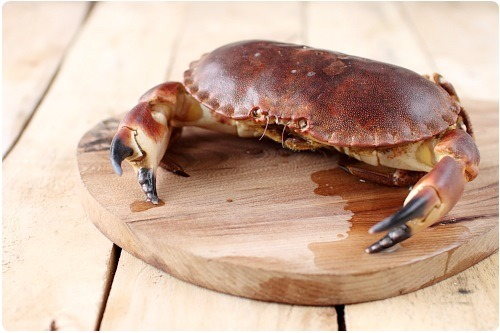 decortiquer-crabe2