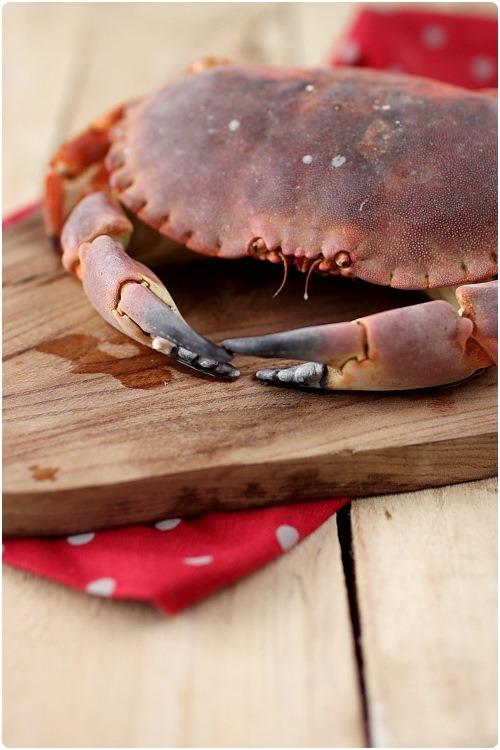 decortiquer-crabe3