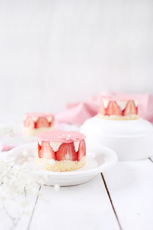 fraisiers-individuels10