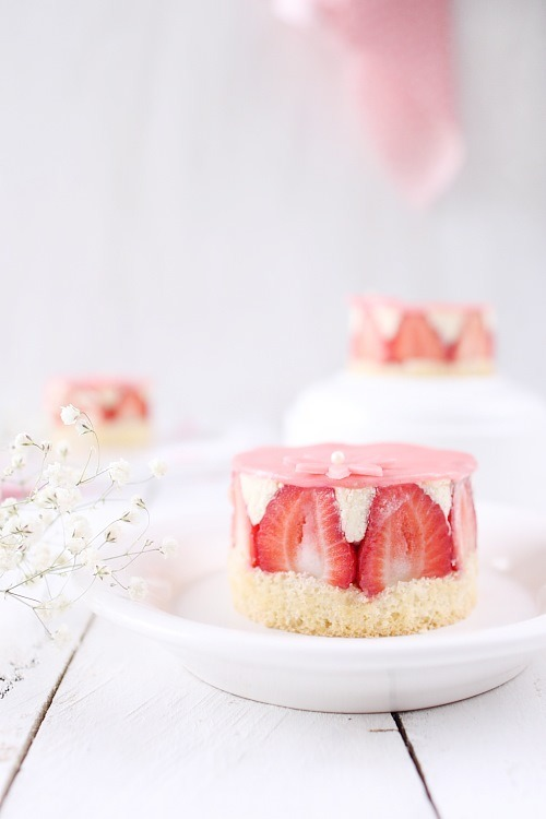 fraisiers-individuels7