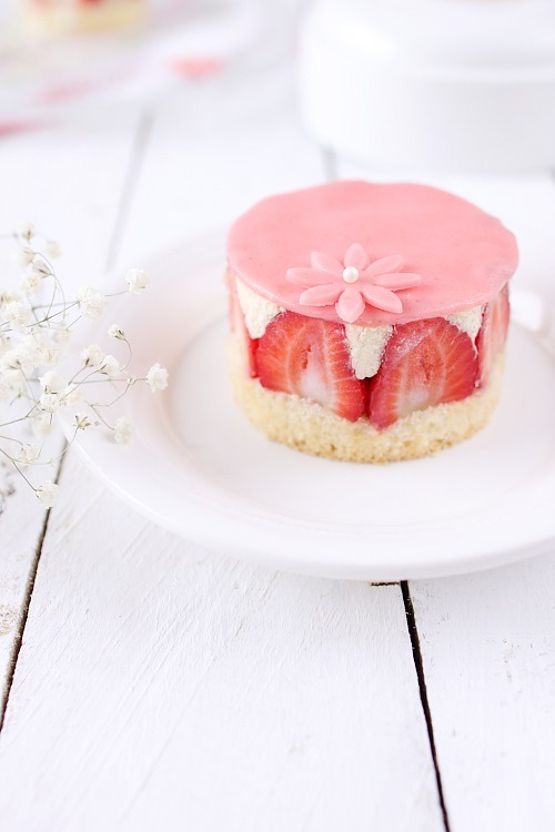 fraisiers-individuels8