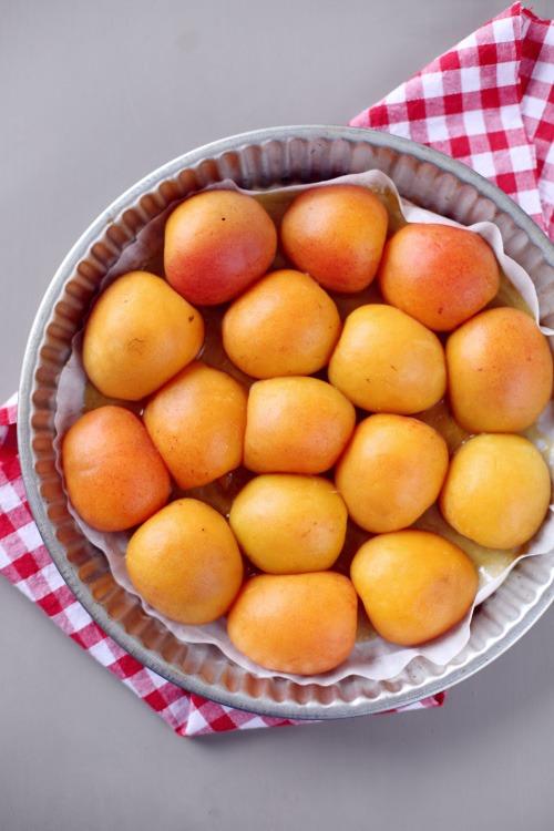 tatin-abricot2