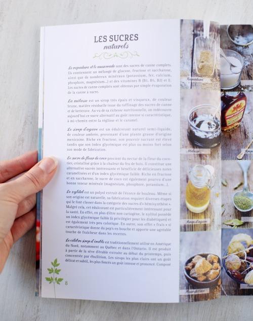 desserts-scures-naturels2 copie