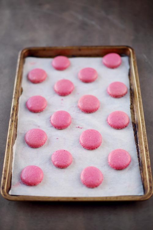 macaron-pomme-amour