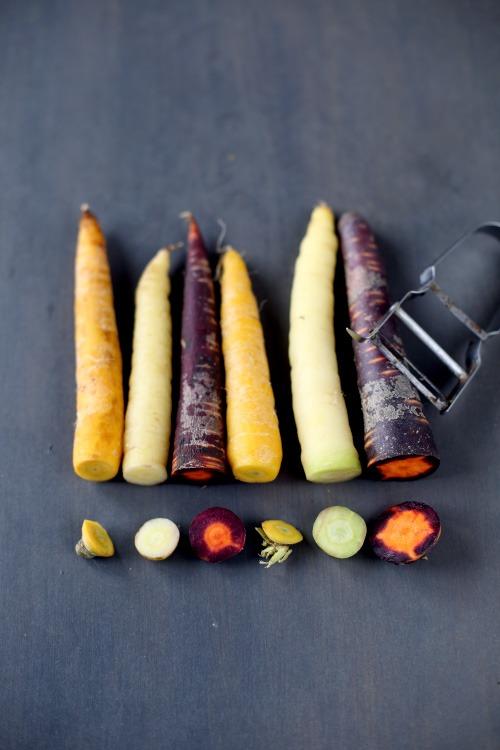 carottes-multicolores2