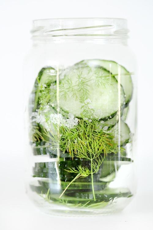 pickles-concombre-aneth
