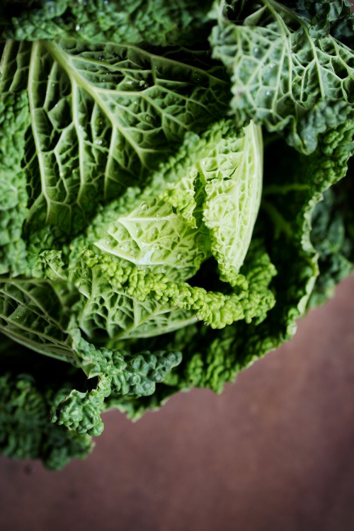 Les choux les conna tre les cuisiner chefnini - Comment cuisiner un choux vert ...