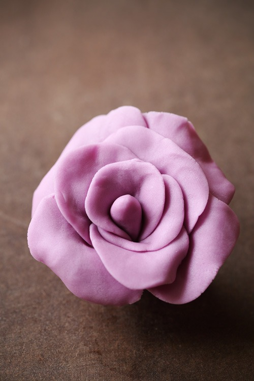 rose-pate-sucre
